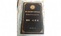 石婷婷-成都民商事律师照片展示