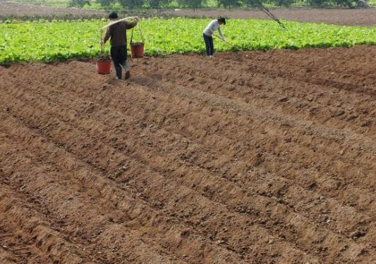 2018年农村土地承包合同怎么写?承包的期限有多久?
