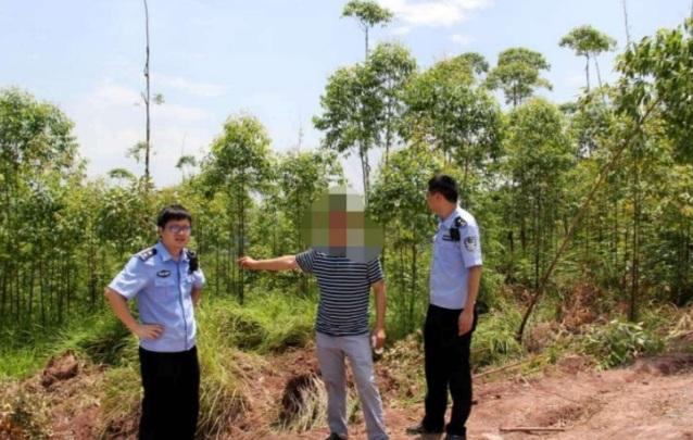 犯了盗伐林木罪一般判多久?