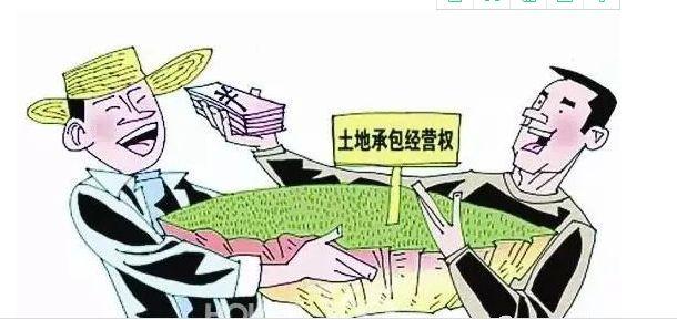 农村土地承包纠纷_承包农民土地合同书_承包的土地需要确权吗