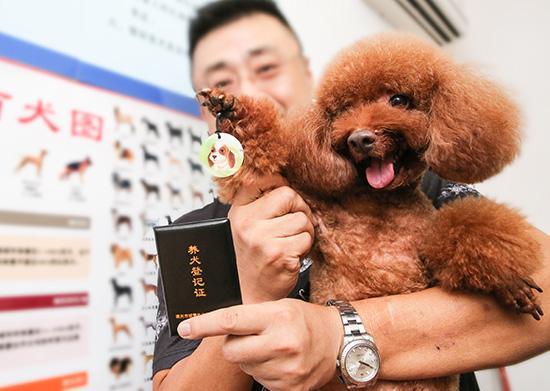 2019年上海��人�k理�B犬登�要��淠男┎牧希可虾^k理�B犬登�的流程是怎�樱�