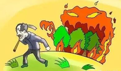 甘�C突�l森林火�� 森林失火罪立案��适鞘裁矗�