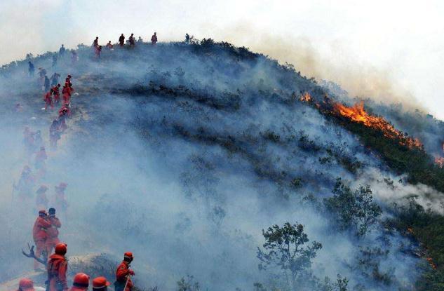 大兴安岭森林火灾 引发森林火灾立案标准是什么?
