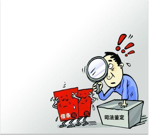 对鉴定结论有异议怎么办?重新申请鉴定需要注意什么?