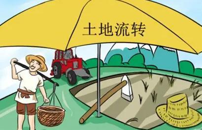 土地承包常见方式有哪些?土地承包流程有哪些?